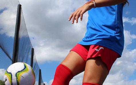 Futsal Fever