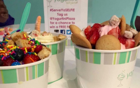 Yogurtini Gratifies Tastebuds for Cheap