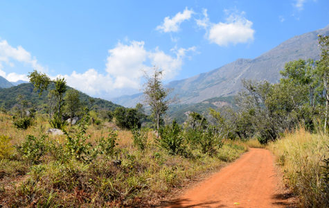 August is a winter month in Malawi and part of one of its dry seasons.