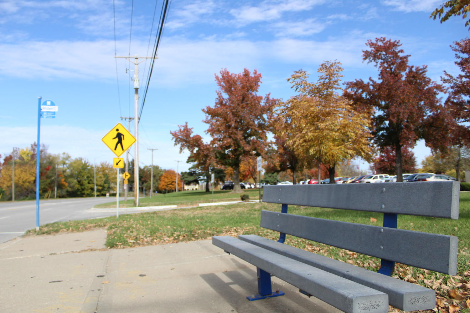 The bus stop near campus which is the proposed spot for the Blessings Box.