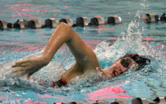 Swim and Dive Succeeds at State