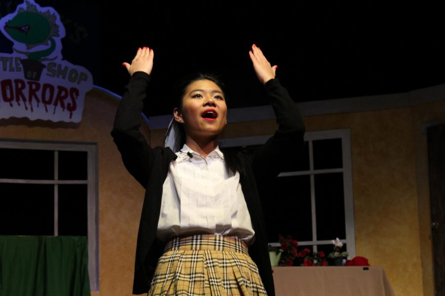 Little Shop of Horrors Photo Gallery